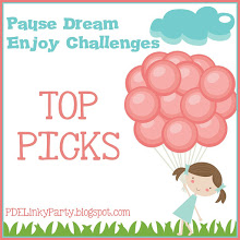 PAUSE DREAM ENJOY Challenge