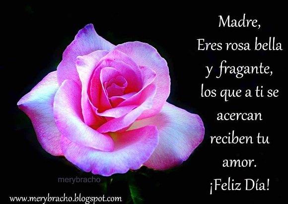 Postal Madre eres rosa bella y fragante. Feliz Día de la Madre. flor hermosa. Postal para mi mamá.Feliz cumpleaños para mi madre. Felicitaciones mami.