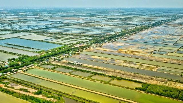 Bewässerung Reisfelder Thailand
