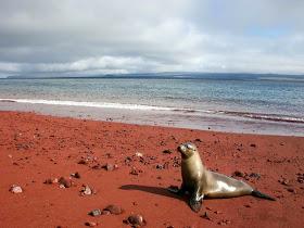 Las 17 playas más increíbles del mundo Playa25