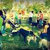 Το πρώτο Πάρκο Σκύλων στην Καβάλα, είναι γεγονός!