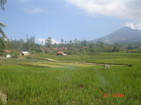 Ini adalah wilayah Desa Sirnagali, tepatnya kampung Citalag RW 05