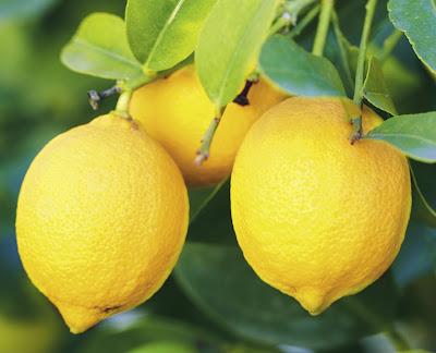 Cara Menghilangkan Flek Hitam di Wajah Dengan Air lemon