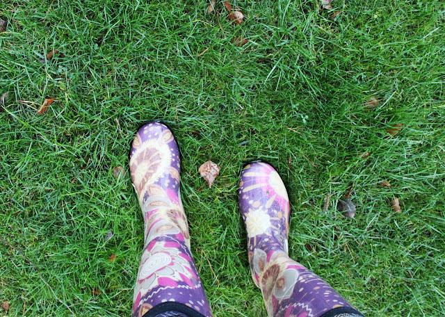 kolorowe kalosze idealne do ogrodu, soczysty zielony trawnik jesienbią, jak dbać o ogród, prace w ogrodzie przed zimą