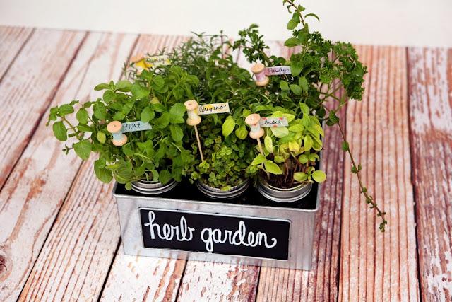 http://eighteen25.blogspot.com/2014/07/diy-herb-garden-plant-markers.html