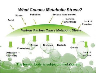 What is Metabolic Syndrome Causes