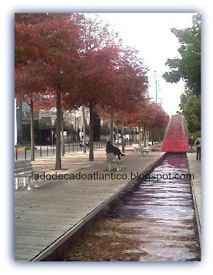 Árvores com folhas vermelhas do outono no Parque das Nações, Lisboa