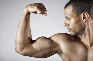 biceps, muscle, biceps curl