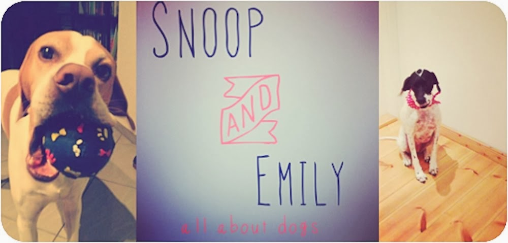 snoop-and-emily