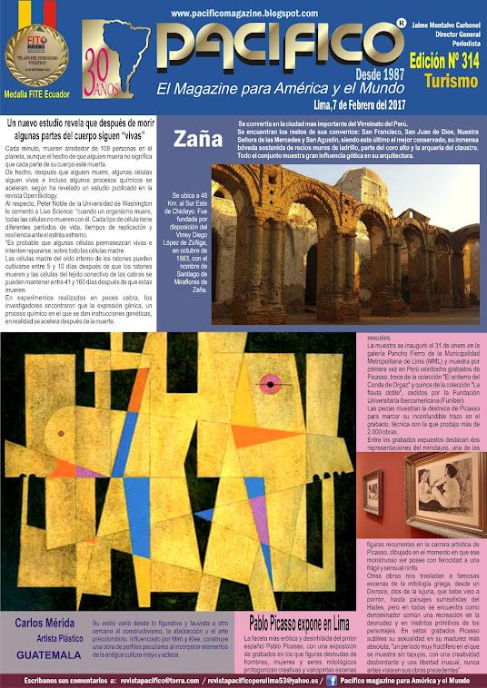 Revista Pacífico Nº 314  Turismo