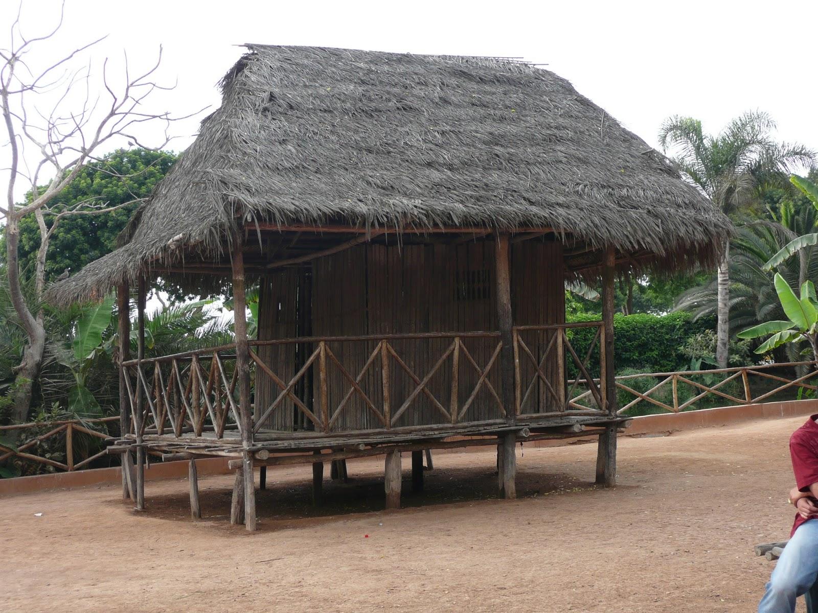 Nuestra selva - Construir una vivienda ...