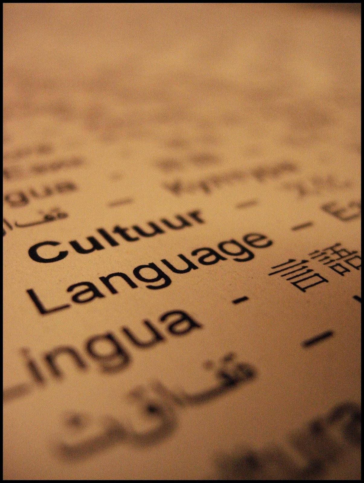 actividad etimología