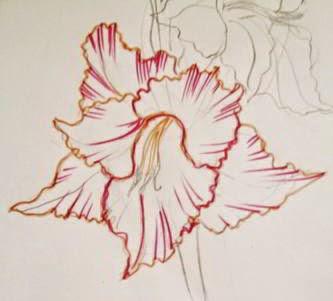 Как нарисовать поэтапно папоротник карандашом