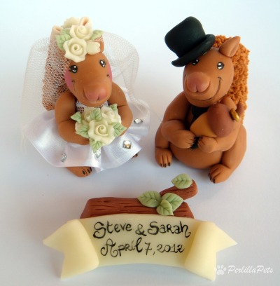 Branch And Amy Cake Topper