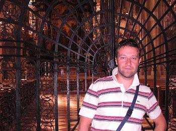 Nella cattedrale di Vienna (2011)