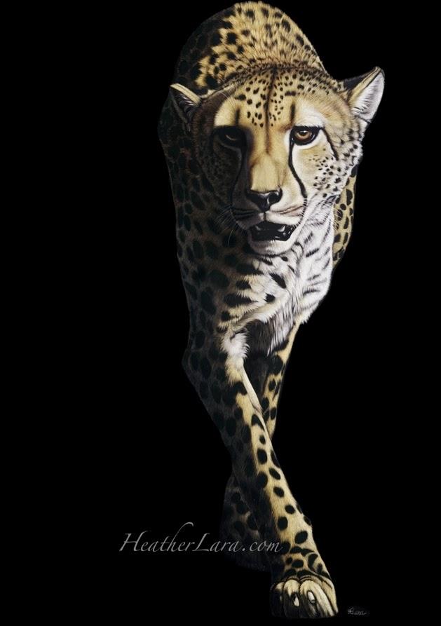 04-Cheetah-Heather-Lara-Hyper-realistic-Animal-Scratchboard-Drawings-Wildlife-www-designstack-co