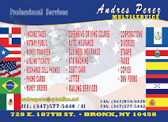 Andres Perez Multiservice