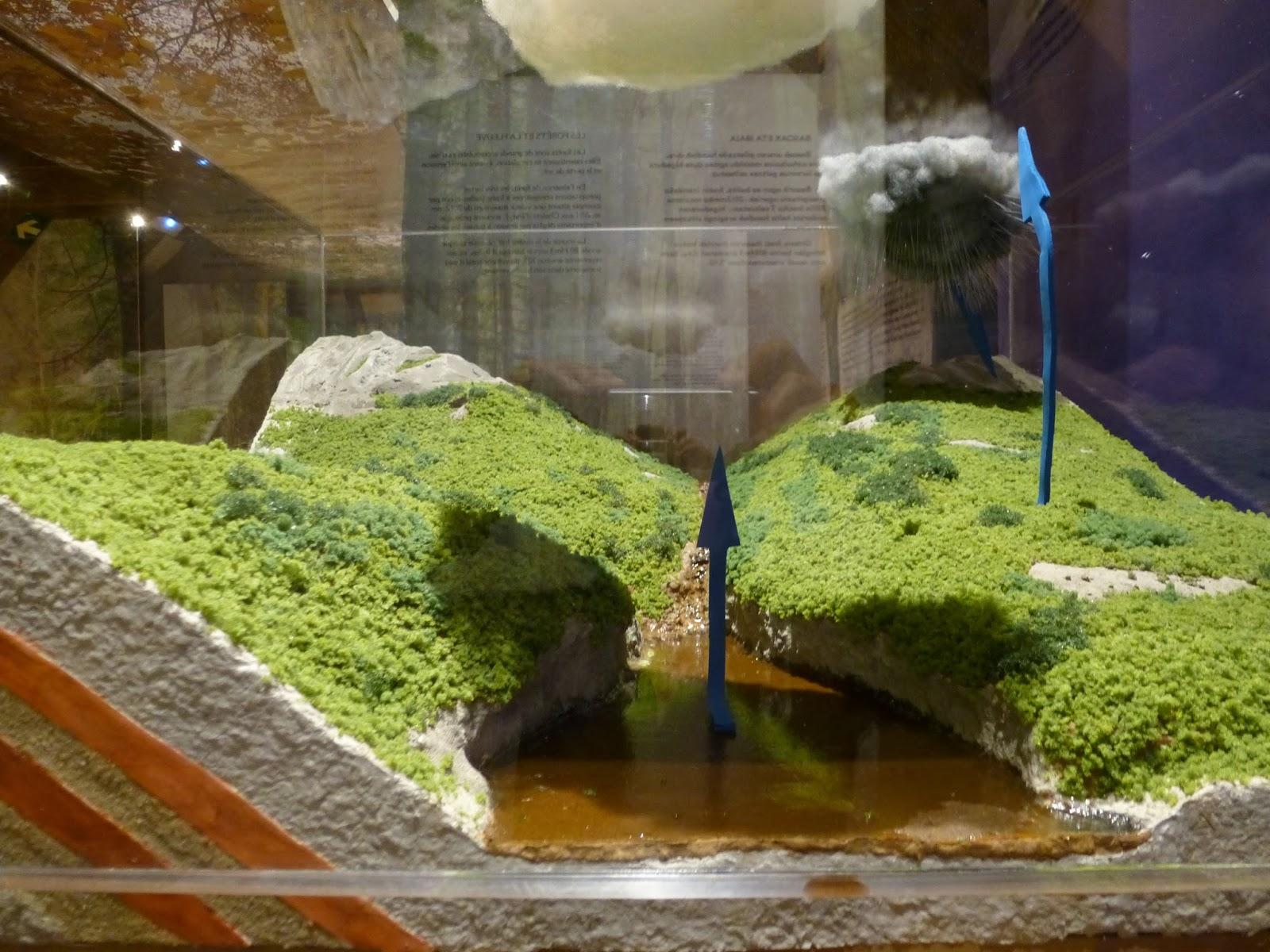 del agua, maqueta explicativa. Cabecera del río Irati y su bosque