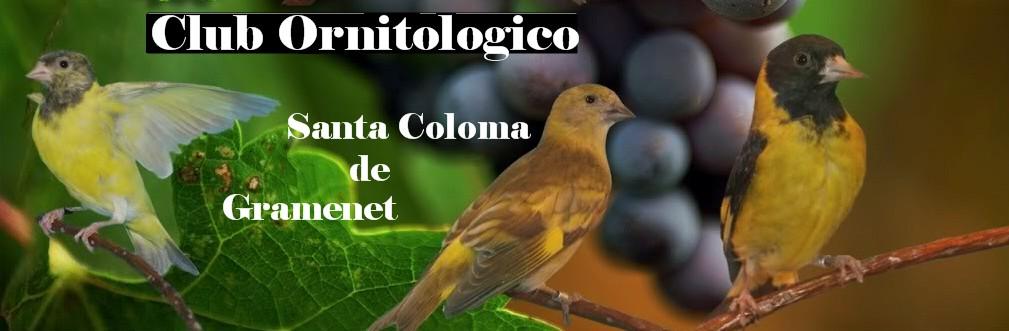 CLUB ORNITOLÓGICO SANTA COLOMA DE GRAMANET