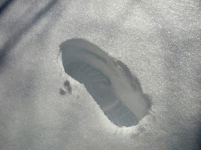 footprint casts shadow