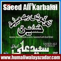 http://ishqehaider.blogspot.com/2013/11/saeed-ali-karbalai-nohay-2014.html