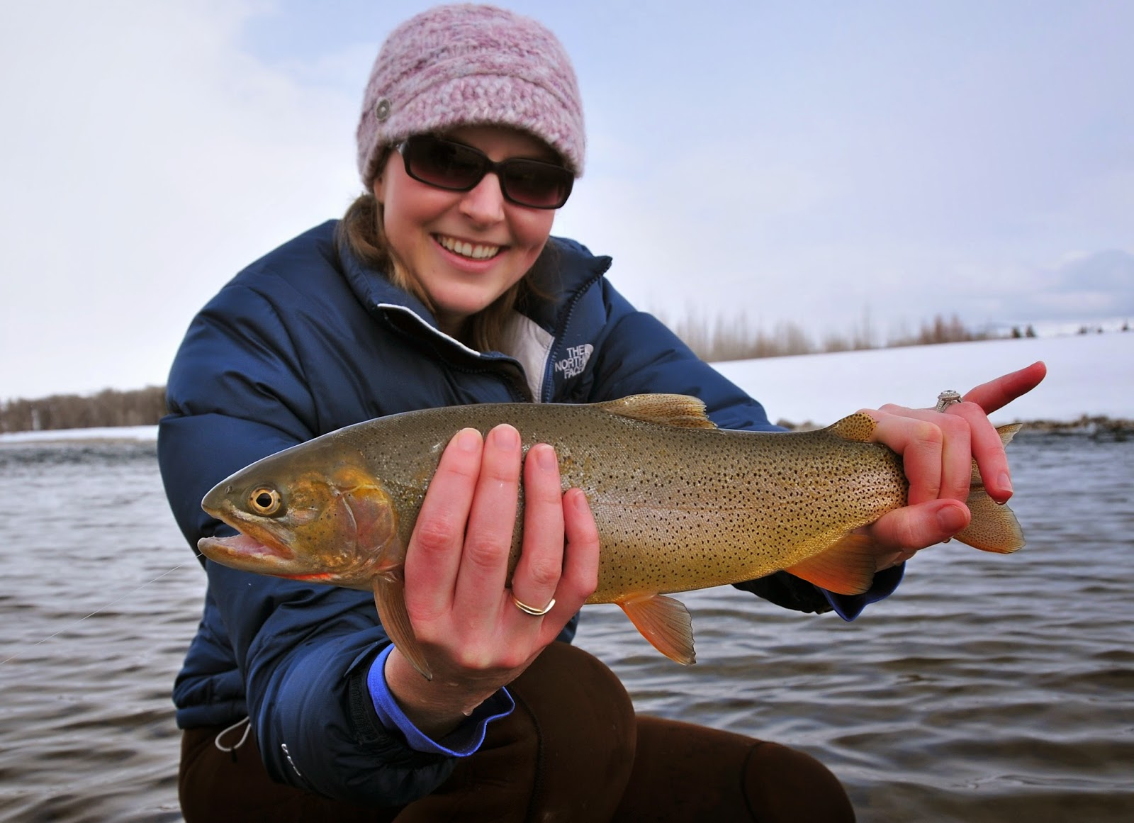 Jackson hole fly fishing mid winter report february 10 2014 for Wilson river fishing report