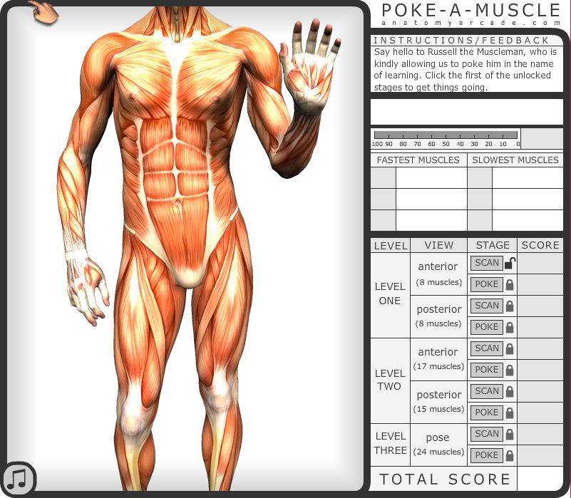 Future Learning Blog Gamification Of Human Anatomy