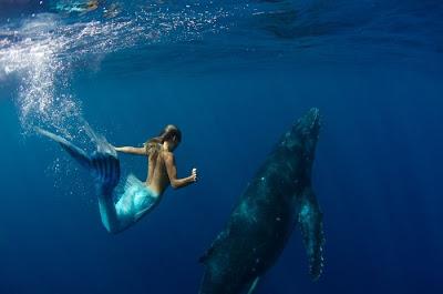 Fotos de Sirenas 10