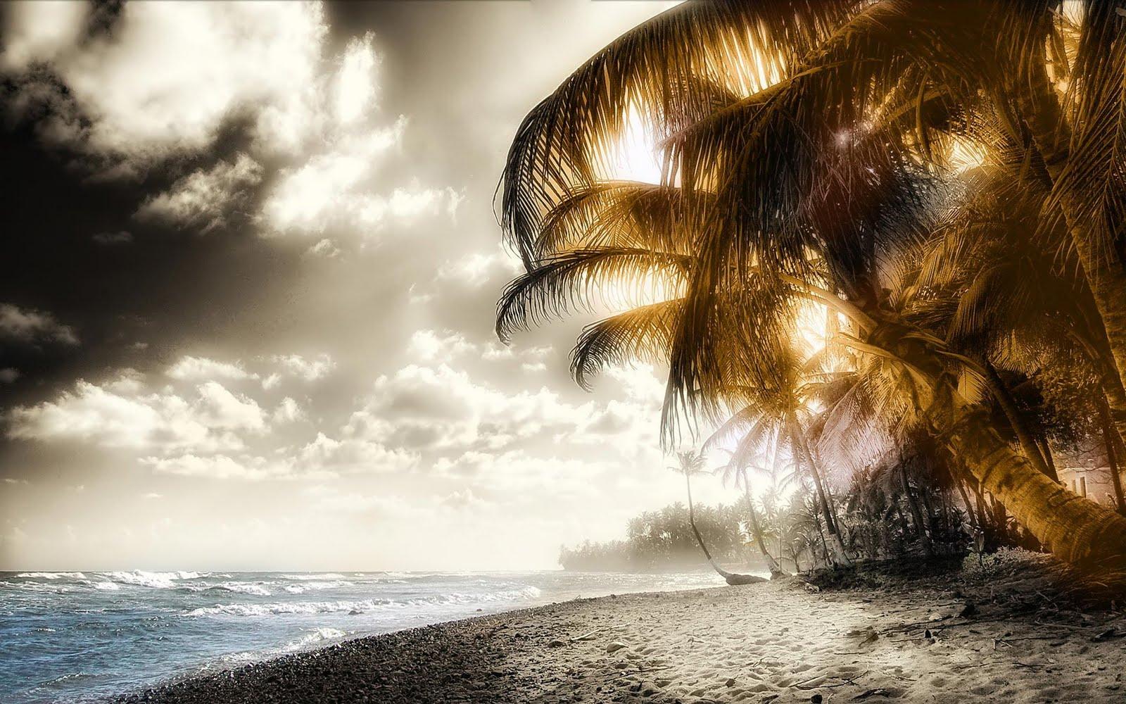 http://4.bp.blogspot.com/-LDLNxEleu4o/TgOWLEe2grI/AAAAAAAAC2Q/H9MYg1fwcH0/s1600/Palm+Beach+hd+wallpaper+new+xp+walls.jpg
