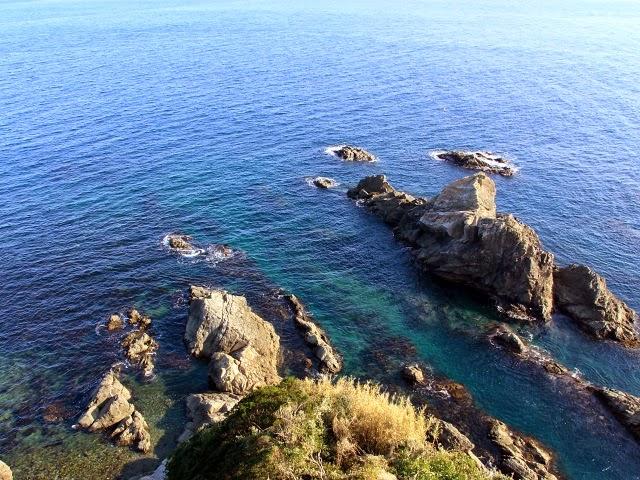大王崎周辺の海