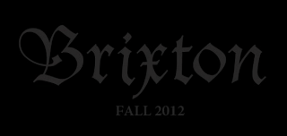 surfin estate blog surf culture skateboard longboard surfboard fashion trends music brixton fall winter 2012 lookbook troy elmore