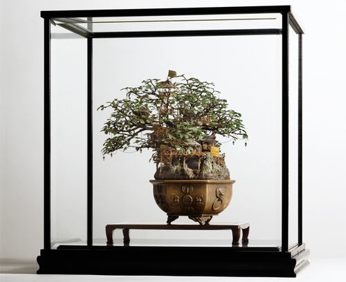 07-Bonsai-3-Japanese-Artist-Takanori-Aiba-Bonsai-www-designstack-co