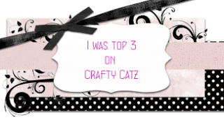 I was chosen top 3 at Crafty Catz