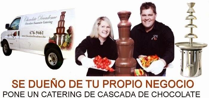 Fuentes de Queso y Chocolate Profesional