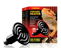 Bearded Dragon Care Bearded Dragon Lighting And Heating