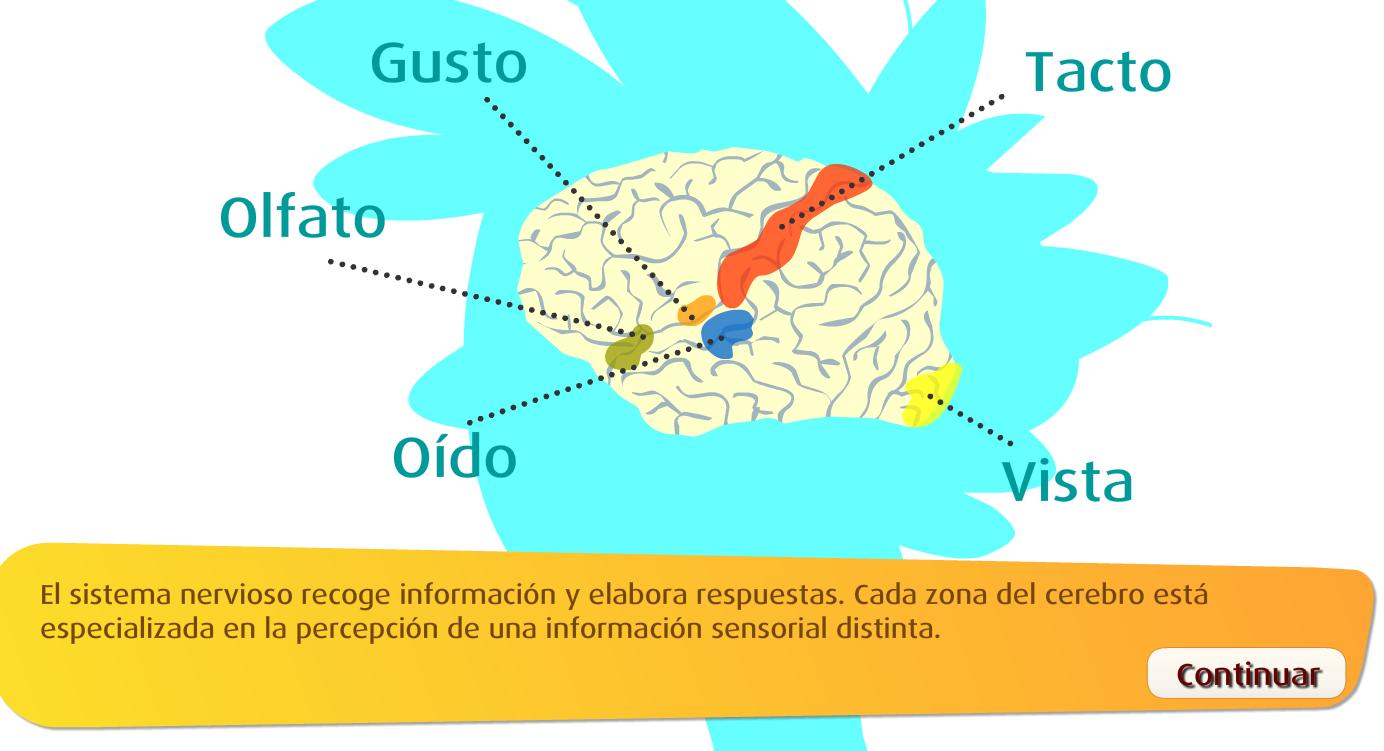 http://www.primerodecarlos.com/TERCERO_PRIMARIA/octubre/Unidad2/actividades/cono/relacion_01/frame_prim.swf