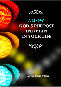 Allow God's Purpose and Plan in Your l