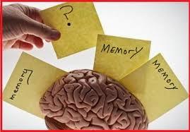 menguatkan ingatan