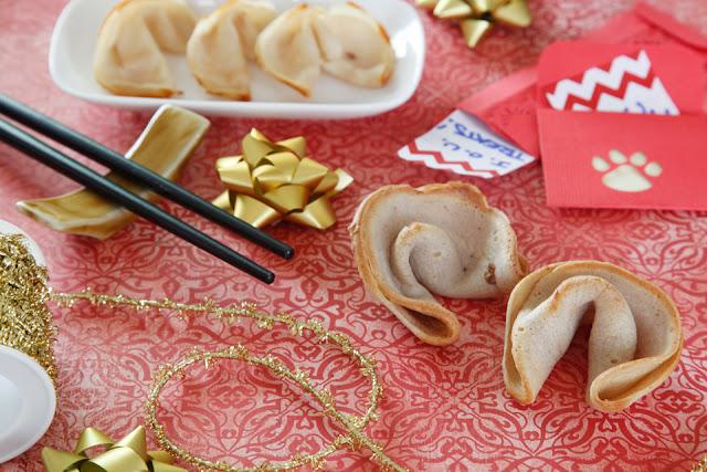 http://dalmatiandiy.blogspot.co.nz/2016/01/recipe-chinese-new-year-dog-fortune.html