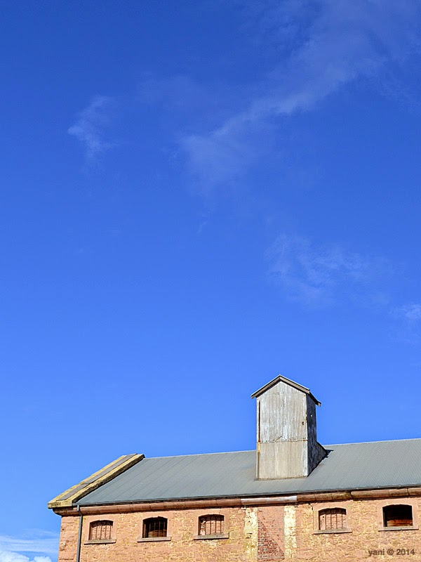 port adelaide roofline