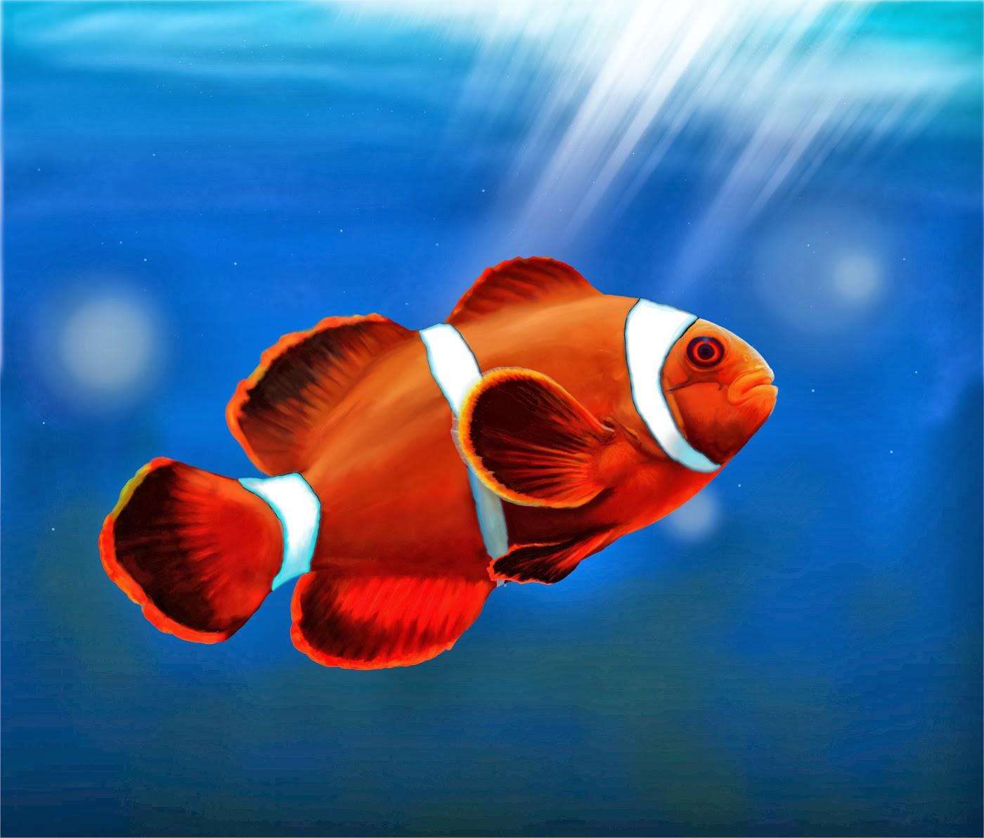 fish share