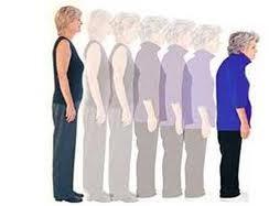 اطالة القامة وزيادة طول الجسم