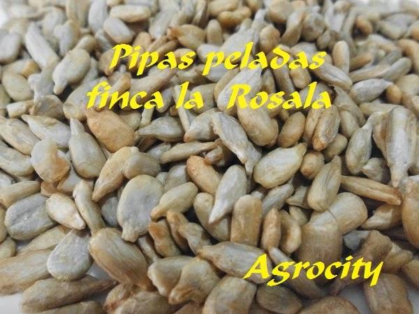 PIPAS PELADAS FINCA LA ROSALA