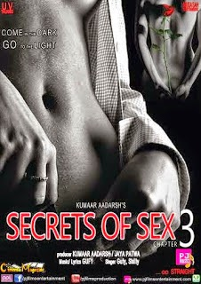 Secrets of Sex Chapter 3 (2014)