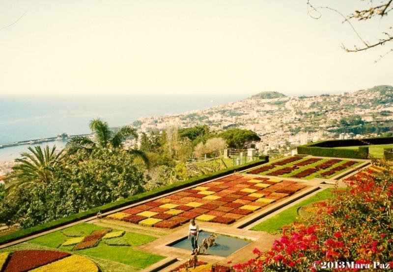 Madeira's Botanical Garden