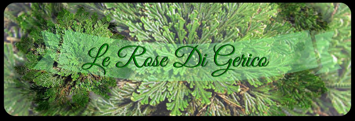 Le Rose Di Gerico