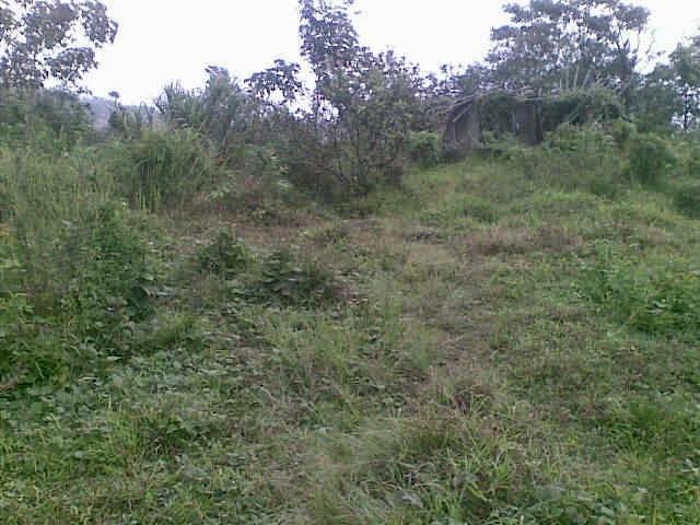 jual tanah murah di cikalong kulon luas 20 HA SHM