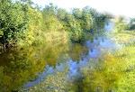 Trecho do rio Joca