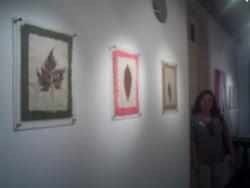 """Marlene Martins  e  seus  """"reciclados"""", na  Galeria de Arte do  IMUCSAL"""