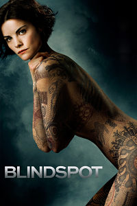 Blindspot Temporada 1×23 Final